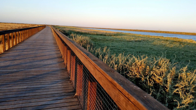 Vem aí uma caminhada pelos Passadiços do Tejo ao pôr do sol