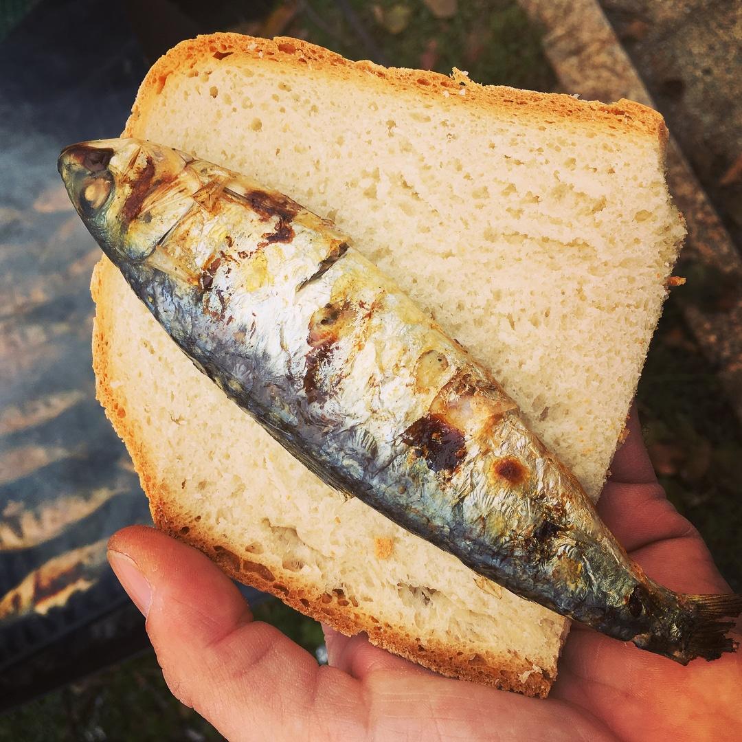 Sardinhadas em Oeiras oferecem sardinhas e pão
