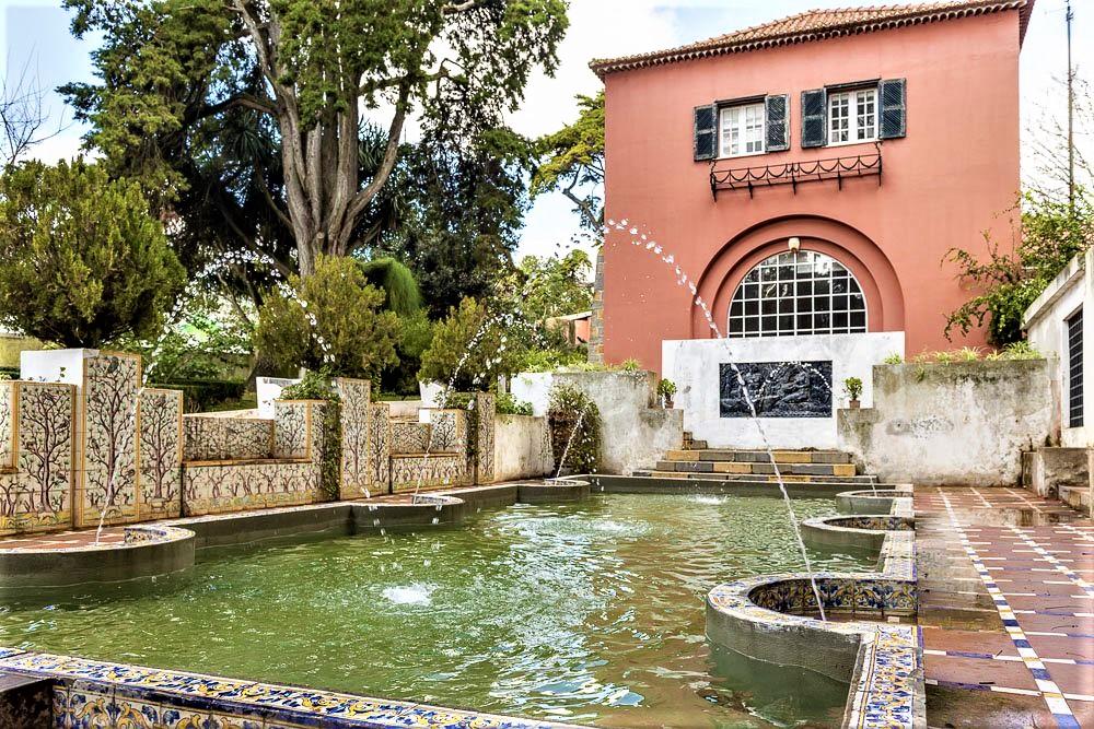 Jardim Botânico Tropical reabre com novos percursos e mais elementos de água