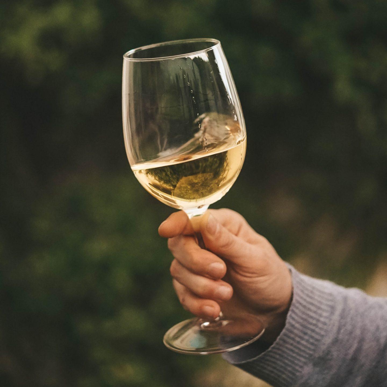 homem a segurar um copo de vinho branco